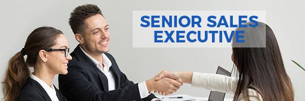 senior-sales-executive